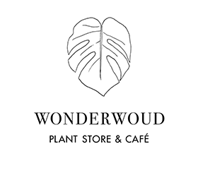 Wonderwoud